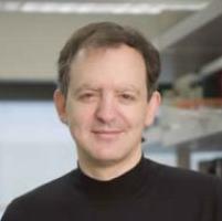 Jonathan Pevsner